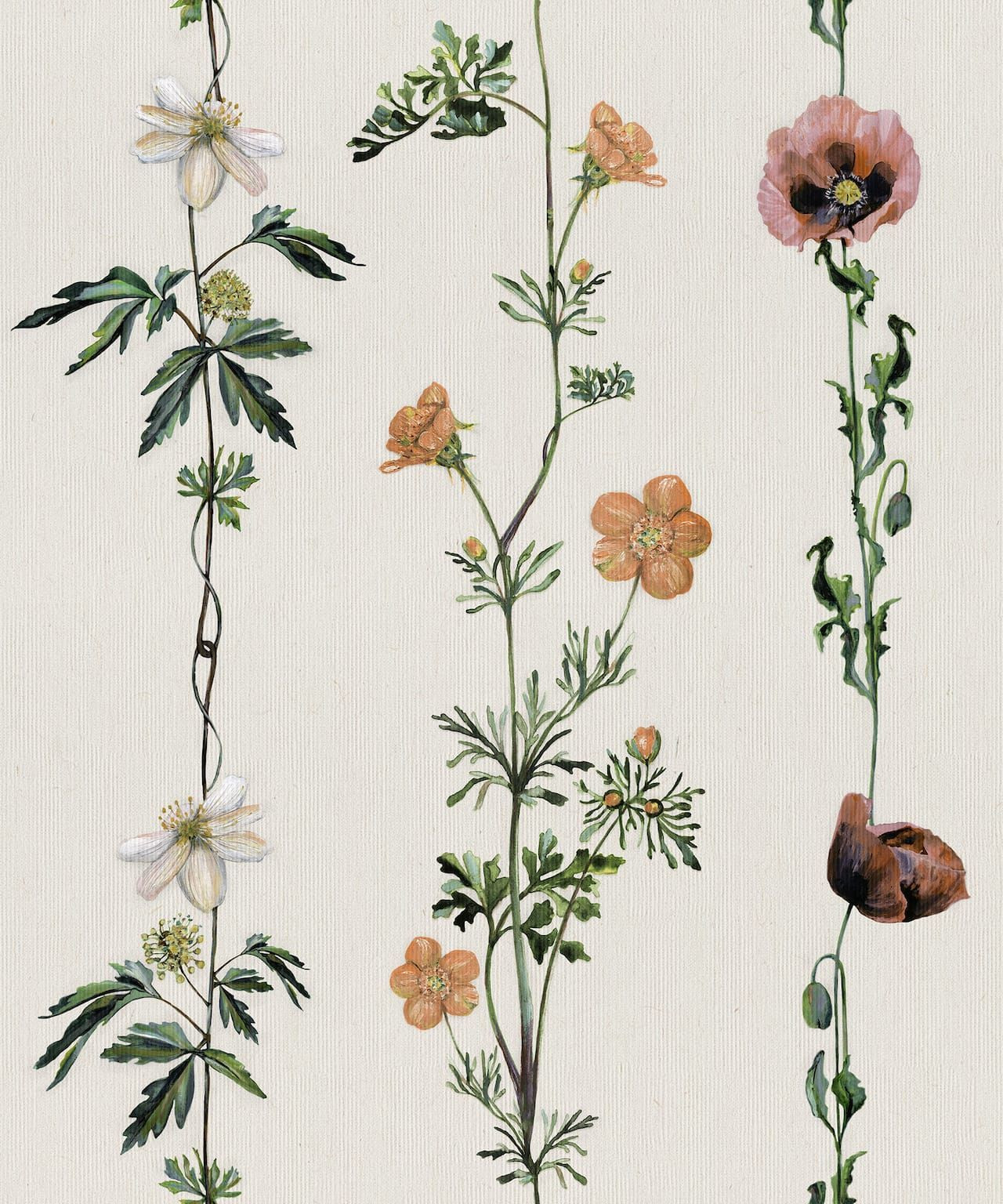 CARTA PARATI COORDONNE' - CLIMBING FLOWERS